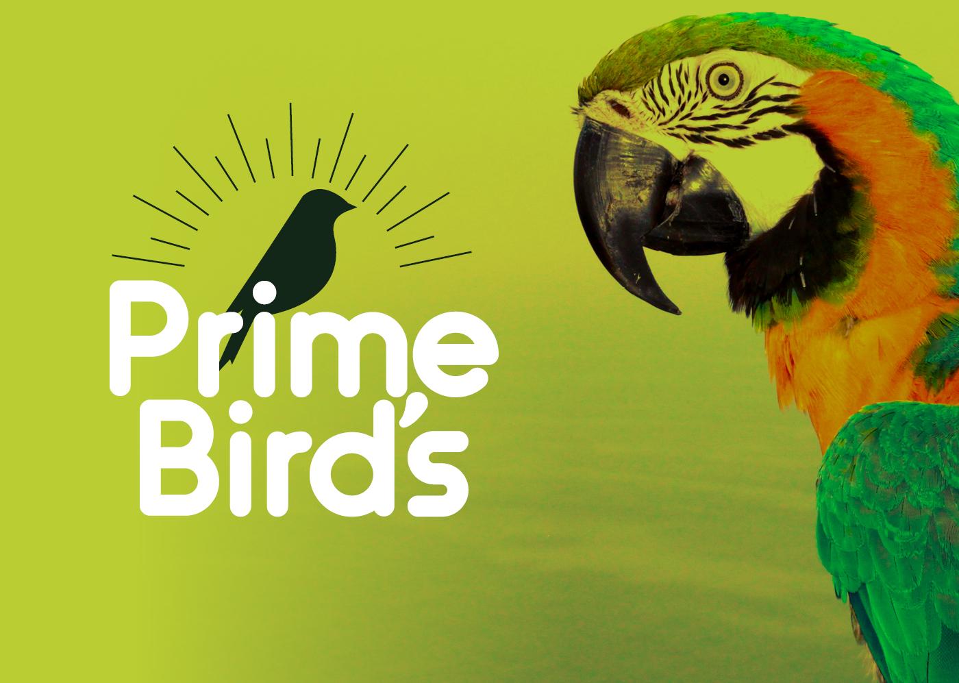primebirds-logo